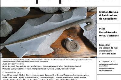 Visite Guidée De L'exposition Temps Fossiles Temps Présent Par Setphen Giner, Géomorphologue Et Paléoenvironnementaliste à La Garde
