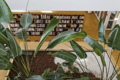 Visite Guidée De La Bibliothèque Universitaire Paris 8 à Saint Denis