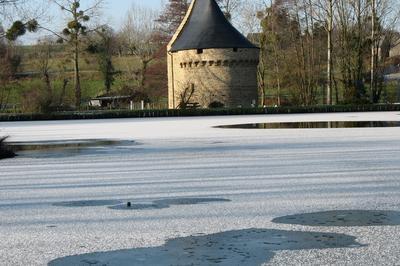 Visite Guidée De La Chapelle Notre-dame De Pitié à Sacey