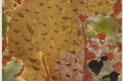 Visite Guidée De La Collection Permanente De Peintures, Bronzes Et Objets D'art Du Xvie Au Milieu Du Xxe Siècle, Dont 35 Tableaux De Bonnard à Toulouse