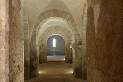 Visite Guidée De La Collégiale Saint-martin Et De Ses Cryptes à Lere