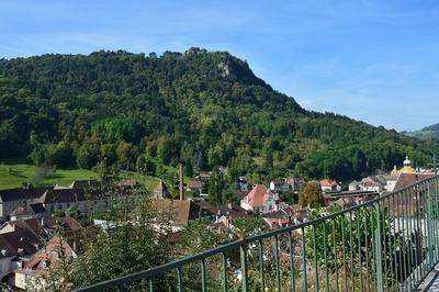 Visite Guidée De La Ville Côté Saint-andré à Salins les Bains