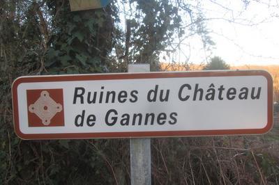 Visite Guidée Des Ruines Du Château De Gannes à L'Home Chamondot