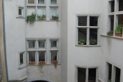 Visite Guidée Du 10 Rue Chenoise Et De L'hotel D'ornacieux à Grenoble