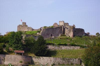 Visite Guidée Du Château D'epinal à Epinal