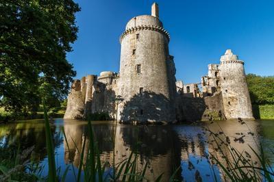 Visite Guidée Du Château De La Hunaudaye à Pleven