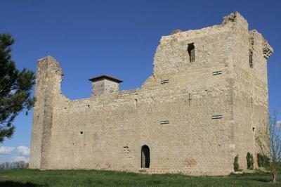 Visite Guidée Du Château De Lagardère à Lagardere