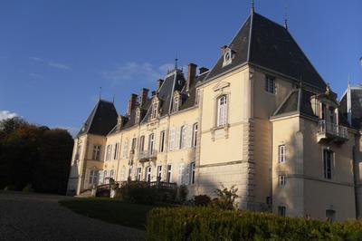 Visité Guidée Du Château De Saint-loup Nantouard à Gray