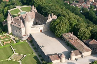 Visite Guidée Du Château De Virieu.