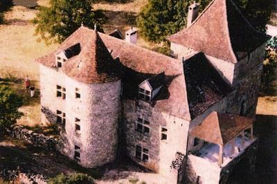 Visite Guidée Du Château Des Bordes De Promilhanes