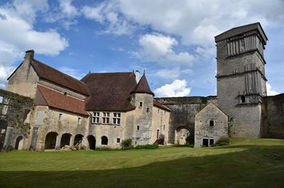 Visite Guidée Du Château Médiéval D'oricourt à Oricourt