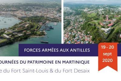 Visite Guidée Du Fort Saint-louis à Fort De France