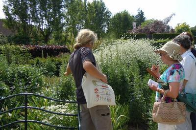 Visite Guidée Du Jardin Du Musée Des Impressionnismes à Giverny