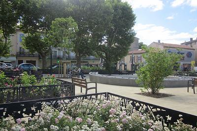 Visite Guidée : Du Jardin Historique Aux Places D'aujourd'hui à Castres