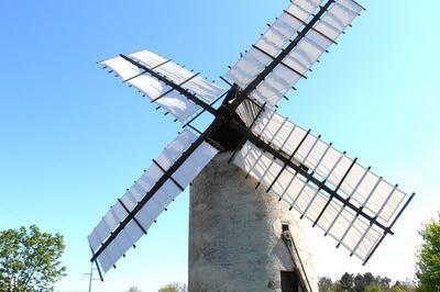 Visite Guidée Du Moulin à Vent De Vensac