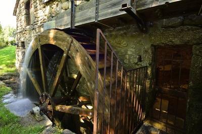 Visite Guidée Du Moulin De Masméjean. à Saint Etienne de Lugdares