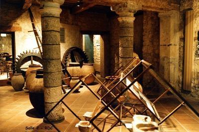 Visite Guidée Du Musée à Draguignan