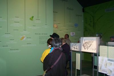 Visite Guidée Du Musée De L'emigration Française Au Canada à Tourouvre