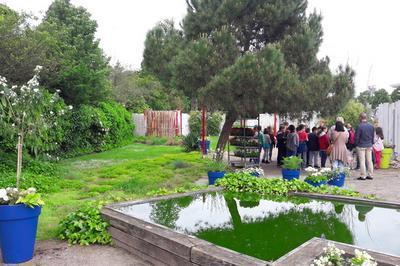 Visite Guidée Du Parc De L'orangerie Dans Le Cadre De L'opération « Levez Les Yeux ! » à Strasbourg