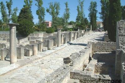 Visite Guidée Du Site Antique De La Villasse à Vaison la Romaine