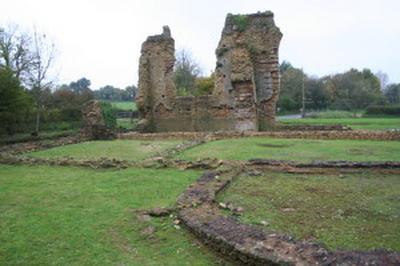 Visite Guidée Du Site D'alauna, Thermes Romains à Valognes