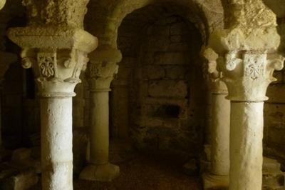 Visite Guidée Du Site De L'ancienne Abbaye De Saint-florent à Saumur