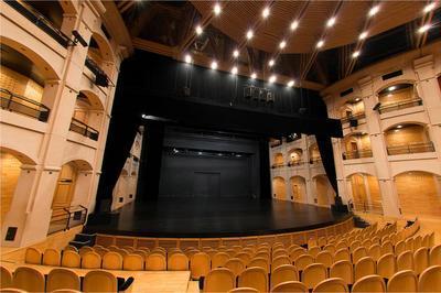 Visite Guidée Du Théâtre Et De Ses Coulisses. à Albertville