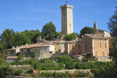Visite Guidée Du Village à Saint Martin de Bromes