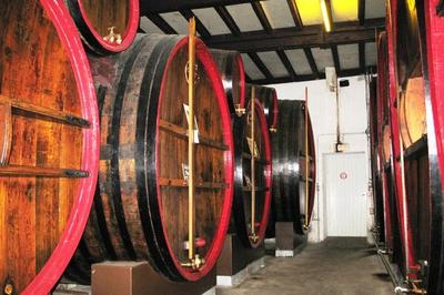 Visite Guidée Et Dégustation Gratuite Distillerie Kario à Belley