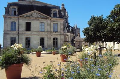 Visite Guidée L'ancien évêché, Aujourd'hui Hôtel De Ville à Blois