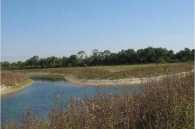 Visite Guidée La Haute-Île : Un Parc à Remonter Le Temps à Neuilly sur Marne