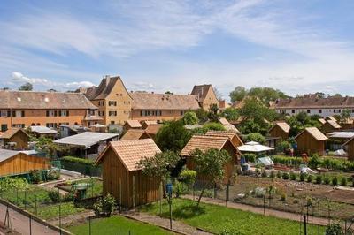 Visite Guidée « Ma Cité Est Un Jardin : Le Stockfeld » à Strasbourg