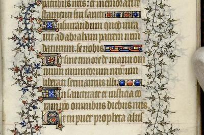 Visite Guidée Le Livre D'heures : Bestseller Du Moyen Âge à Avranches