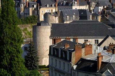 Visite Guidée Les Fortifications De Blois