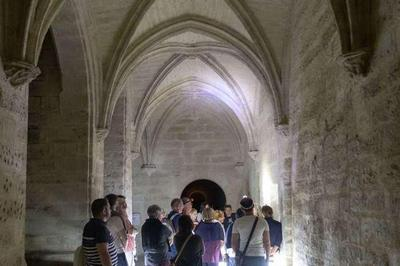 Visite Guidée Nocturne à Villeneuve les Avignon