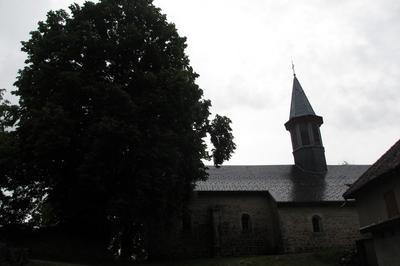 Visite Historique Guidée D'ordonnaz à Ordonnaz
