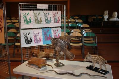 Visite Libre Autour Des Travaux Des élèves Et De La Collection Naturaliste. à Poitiers