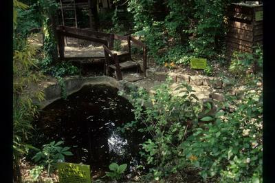 Visite Libre D'un Site Naturel Atypique à Colombes