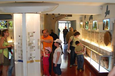 Visite Libre De L'espace Muséographique Et Du Parc à Cuisery