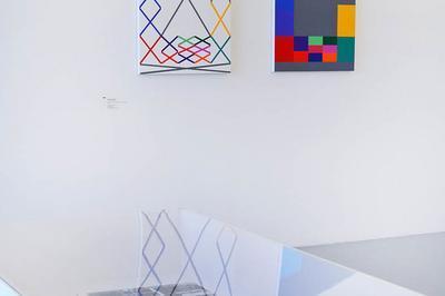 Visite Libre De L'exposition Dialogues Concrets, Carlos Cruz-diez & La Donation Albers-honegger à Mouans Sartoux