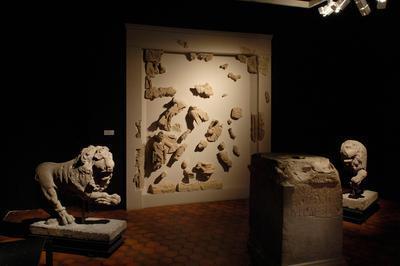 Visite Libre De L'exposition Musée Archéologique: Mode D'emploi. La Vie Mouvementée Des Collections à Strasbourg