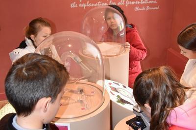 Visite Libre De L'exposition Permanente Claude Bernard à Saint Julien