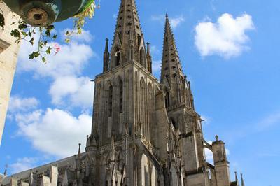 Visite Libre De La Cathédrale Notre-dame-de-sées à Sees