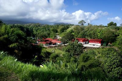 Visite Libre De La Distillerie Jm à Macouba