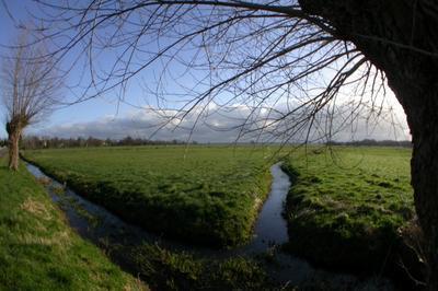 Visite Libre De La Maison Du Parc Et De L'espace Naturel Sensible Des Marais Des Ponts D'ouve à Saint Come du Mont