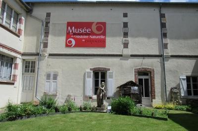 Visite Libre Des Collections à Chateaudun