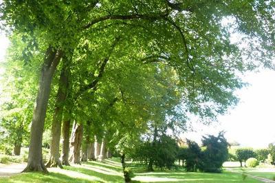 Visite Libre Des Jardins à Vernon
