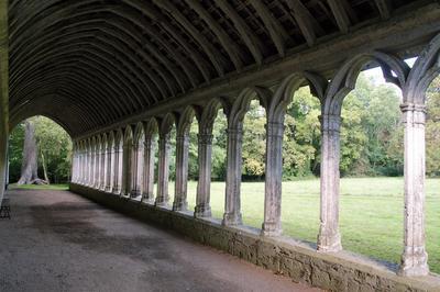 Visite Libre Des Vestiges De L'abbaye à Chouzy sur Cisse