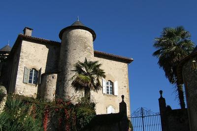 Visite Libre Du Château à Seix