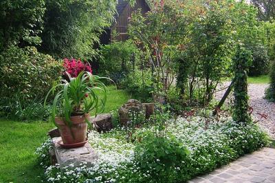 Visite Libre Du Jardin D'alain à Saint Pierre du Val